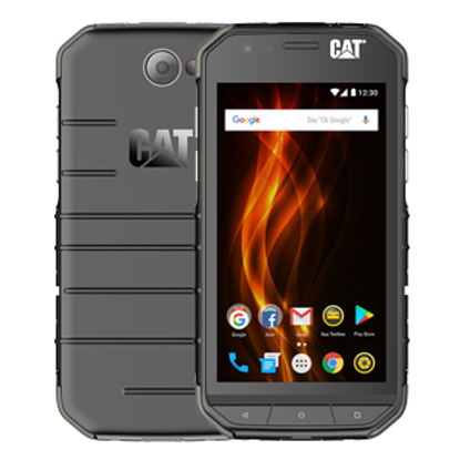 Picture of CAT S31